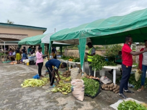 A cross section of Sellers and Buyers at the Organic Market Day